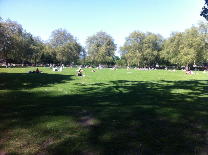 Local park.